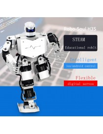 Robo-Soul H3S Humanoid