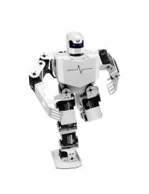 H5S: Humanoid Robot